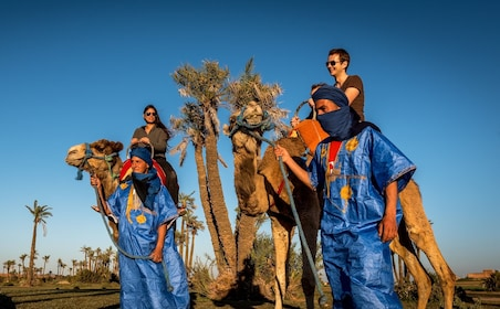 Camel & ATV Combo Full-Day Desert Tour