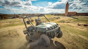 Half-Day Desert Buggy Tour