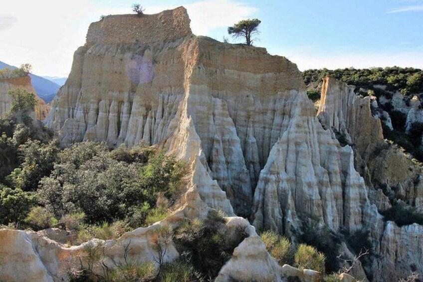 Show item 3 of 6. Wild Organs: Grand Landscape, Plants, Geology, Birdsongs
