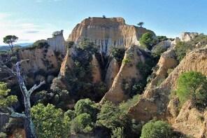 Wild Organs: Grand Landscape, Plants, Geology, Birdsongs
