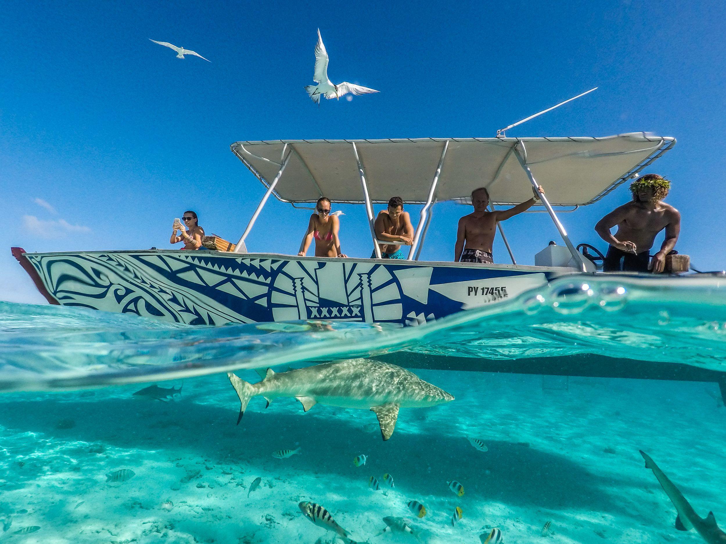 Polynesian Island Full-Day Tour