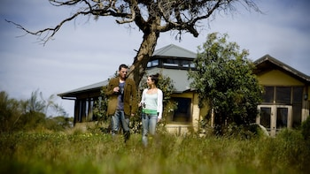 Great Ocean Road Eco-Conservation Tour from Melbourne