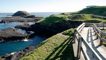 Phillip Island Natural Excursion from Melbourne