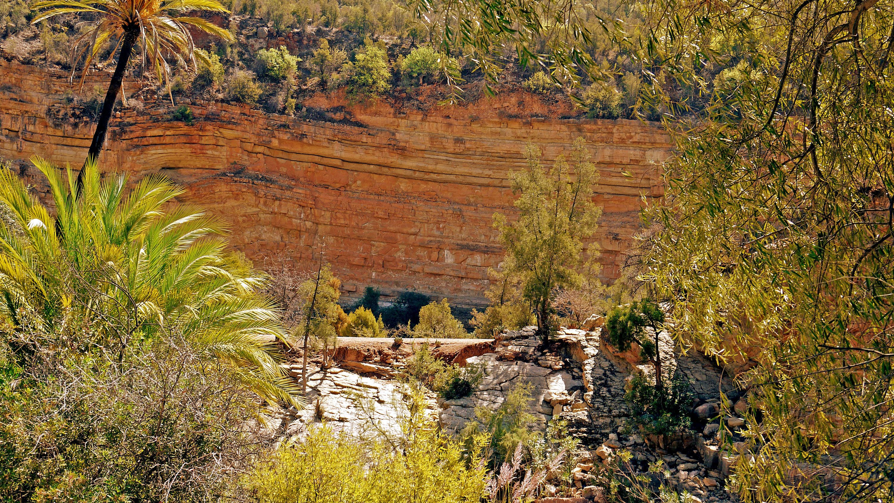 Colorful cliffs and green forests of Paradise Valley