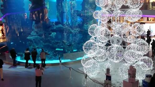 interior of aquarium with wire sculptures