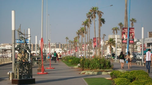 city street lined with palm trees