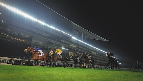 Action shot of horse race taking place at night.