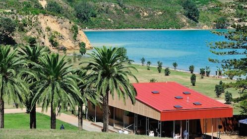 a small building near the beach on Rotoroa Island