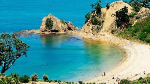 crescent shaped beachfront of Rotoroa Island