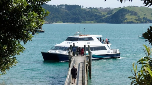 boarding a boat at the bay in New Zealand