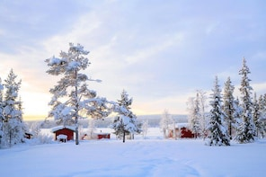 Kiruna (KRN) to City Center to Airport - Private Transfer