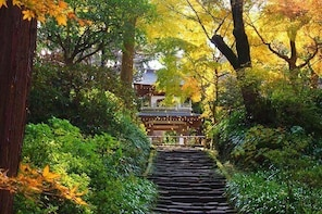 Kamakura Zen Temples and Gardens Private Trip with Nationally-Licensed Guid...
