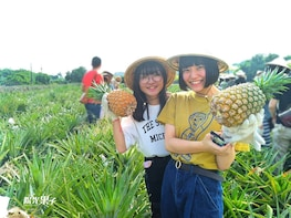 Taiwan's Ultimate Pineapple Day Tour in Kaohsiung