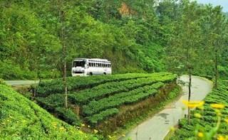 Munnar Nature Sightseeing Tour