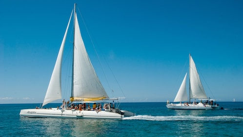 Sailboats on the Saona Island