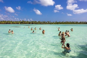 Saona Island Speedboat & Catamaran with Natural Pool Swim