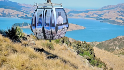 View of the Port Hills Gondola Experience in Christchurch