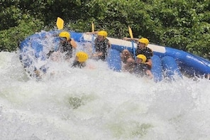 One Day White water rafting Tour in Jinja