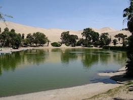 Dune Buggy and Sandboard in Huacachina Ica