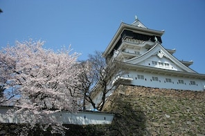Kitakyushu Full-Day Private Trip with Nationally-Licensed Guide