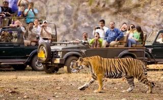 Open Jeep Safari In Ooty