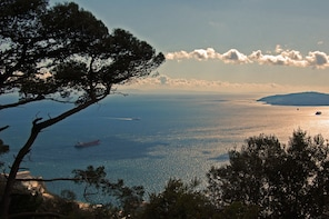 Gibraltar Full-Day Excursion (private)