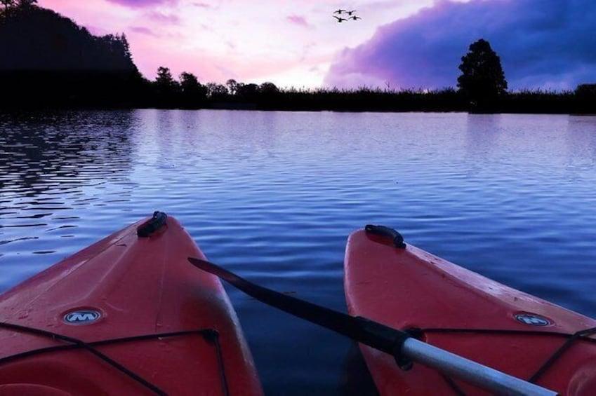 Show item 4 of 4. Night Kayaking At Swaraj Dweep (Havelock), Andamans