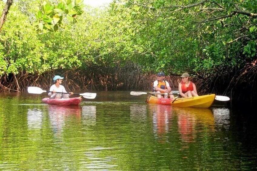 Show item 3 of 4. Night Kayaking At Swaraj Dweep (Havelock), Andamans