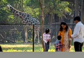 Hyderabad Zoological Tour With Safari