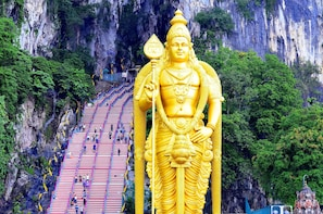 16 Hrs Kuala Lumpur Flexible Day & Night Car Tour from Ipoh