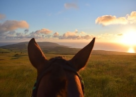 Terevaka Horseback Tour