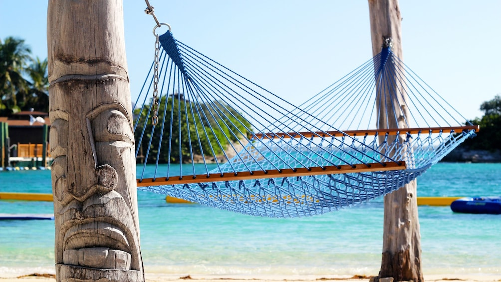 Show item 3 of 6. Hammock between two trees on the beach