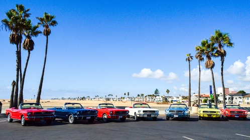 Lot full of Classic Mustang for rent in Orange County