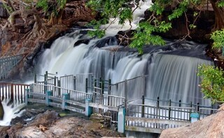 Day Tour Coimbatore To Hogenakkal Waterfalls