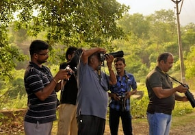 Wildlife Photography In Mudumalai National Park