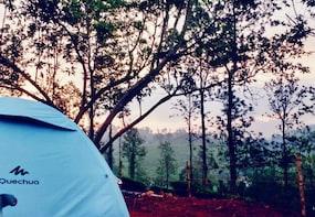 Camping Experience In Wayanad, Kerala