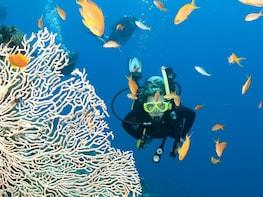 4 Day Nha Trang Scuba Diving Tour
