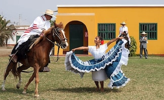 Peruvian Paso Horse & Marinera show with lunch in Trujillo