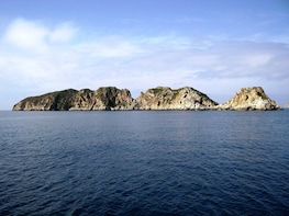 Discover the Dragonera Island by speed boat