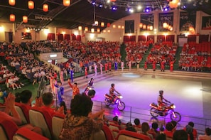 Jeju Circus World Ticket