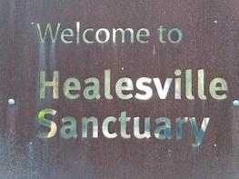 Healesville Wildlife Sanctuary