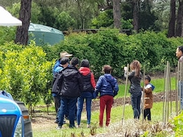 Tour 3 Yarra Valley Wineries And Rayners Orchard