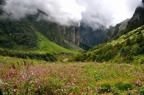 Valley of Flowers Heaven Trek