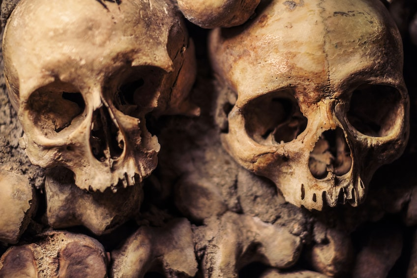 Show item 9 of 9. Live Online Tour: Discover the Darkness- Catacombs of Paris
