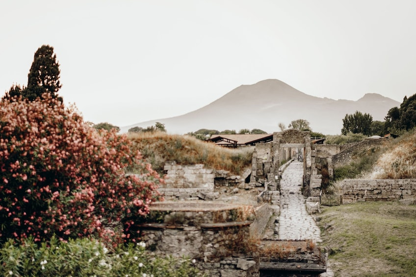 Show item 1 of 10. Tours from Home: Best of Pompeii with Live Local Guide