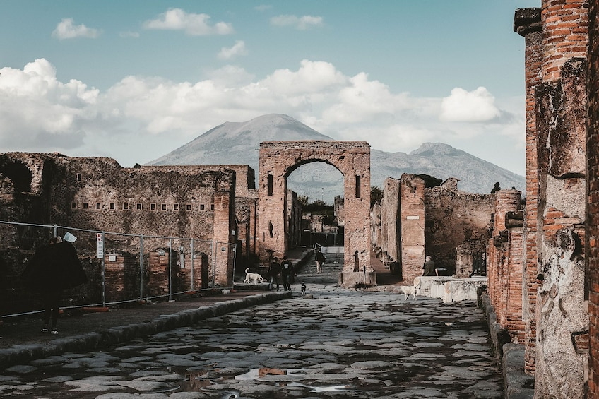 Show item 3 of 10. Tours from Home: Best of Pompeii with Live Local Guide