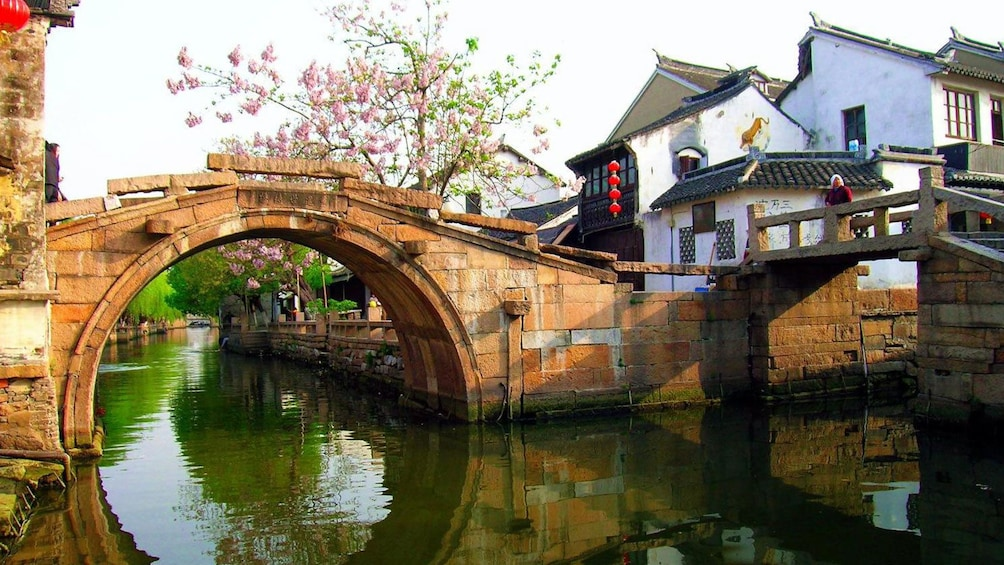Show item 3 of 9. blossoming tree near a short bridge in China