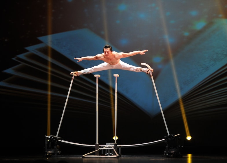 正在顯示第 3 張相片,共 10 張。 Chinese Acrobatics Show & Evening City Lights Coach Tour
