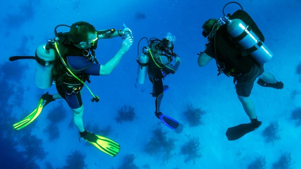 Show item 4 of 10. Join-in Tour: Marmaris Scuba Diving in crystal clear waters