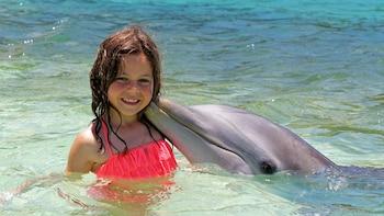 Blue Lagoon Dolphin Encounter with Beach Access